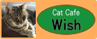 猫たちを守る十勝Wishの会</a></font><br></center></div><div class=
