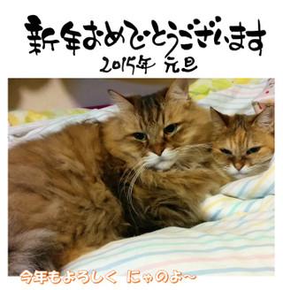 Kukita_01_a
